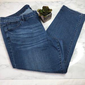 Venezia for Lane Bryant Jeans, lightly distressed